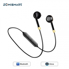 Smart Alexa Earphone Voice Remote Control Home Automation BT Blue HiFi Stereo Online Music