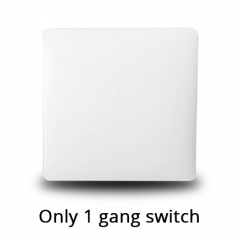 One gang Switch