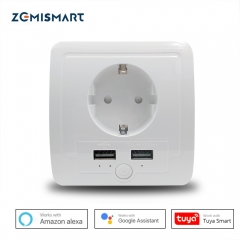 EU Wall Recessed Outlet Work with Amazon Alexa Google Home with 2 USB Ports 15A output Support Phone APP Control